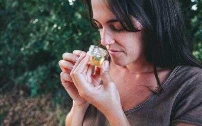Descubre y crea tu aroma